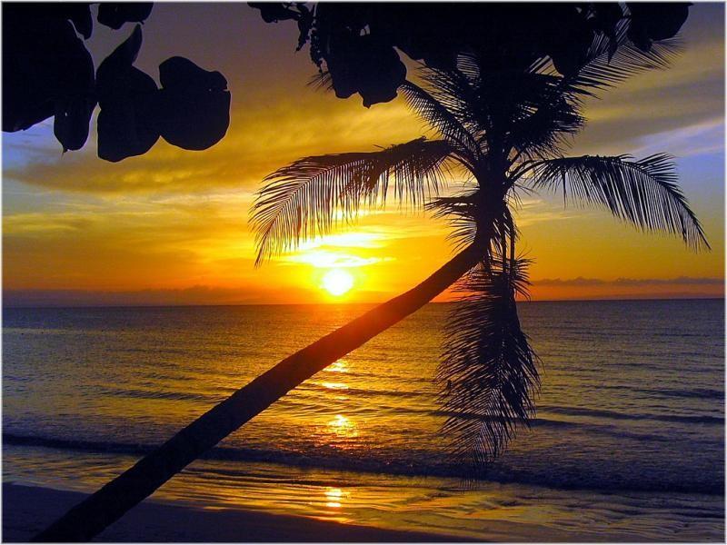 HI9/F5PLR Playas de Coson, Las Terrenas, Samana, Dominican Republic.