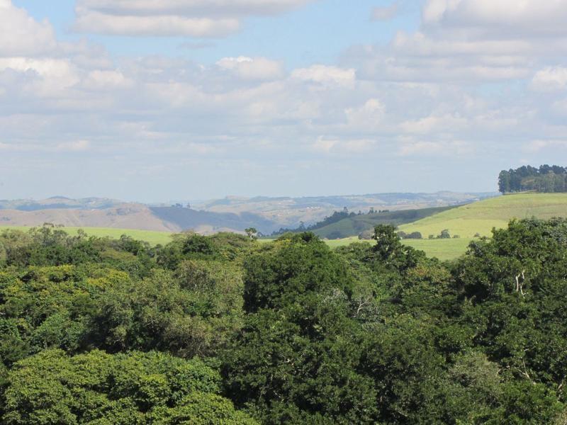ZS5ZLB/P Zululand Amateur Radio Club Dlinza Forest South Africa.