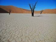 V5/DL3DXX Namibia