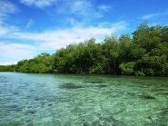 V650XG Kosrae Island