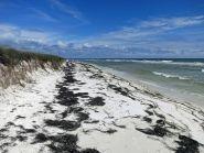 K5TEN/P Собачий остров Флорида