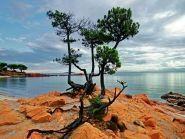 TK/F4FWN Corsica Island