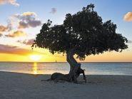 P4/W6HGF P40HF Aruba