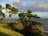 FM/HB9AOF Martinique Island
