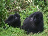 9X0WA Rwanda