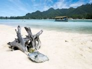 E51EAQ Rarotonga Island