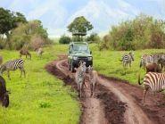 5H3/IZ2RXF Tanzania