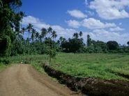 E51AQA Rarotonga Island