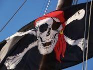 CY9SPI Пират