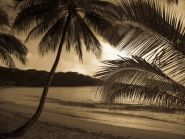S9BT S9WL Sao Tome Island Sao Tome and Principe