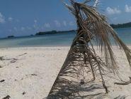 DU1/JA1PBV Polillo Islands