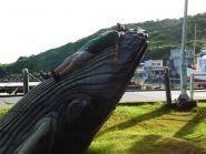 JD1YBV Ogasawara Islands