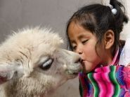 OA7/DL1CW Перу