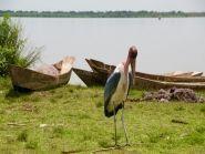 5X7W Uganda