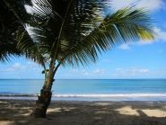 J6 Saint Lucia Island Buddipole DXPedition
