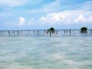 YE0S Sebira Island Seribu Islands
