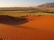 V5/NZ2P Namibia