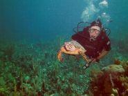 ZF2AG Grand Cayman Island