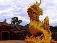 3W9DQ Vietnam
