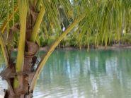 YJ0ST Vanuatu