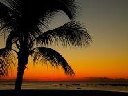 3B8/IW2NEF Mauritius Island