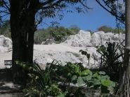 C21VE C21JY C21MA Nauru