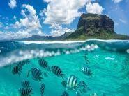 3B8/OK2ZI Pointe aux Sables Mauritius