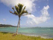 J8NY Saint Vincent Island