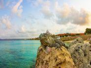 PJ4/N2HX Bonaire Island