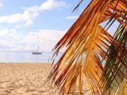 TO5O FM/DL8UD Martinique
