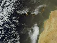 EF8M Canary Islands