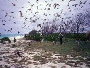K4M Midway Island