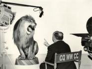 Как себя поведет CQ WW DX Contest Комитет