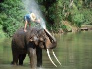 E20AS Thailand