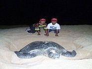 ZD8RH Ascension Island