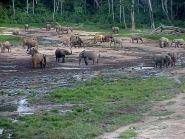 TL8PB Central African Republic
