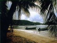 Martinique Island FM/KL7WA TO7A CQ WW DX SSB Contest 2010