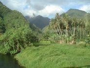 Tahiti Island FO8RZ WW DX SSB Contest 2010