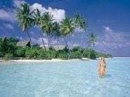 Мальдивские острова 8Q7DV CQ WW DX CW 2010