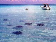 ZF1A Cayman Islands