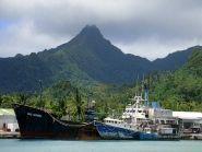 E51AND Rarotonga Island