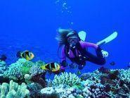 3D2AD Fiji Islands