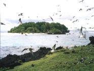 3D2AG/P Rotuma Island