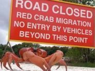 VK9XS Christmas Island
