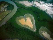 Новая Каледония TX8CW