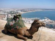 Марокко 5D7AT