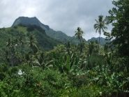 E51JJU Rarotonga Island