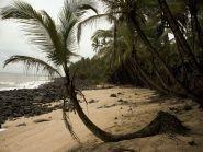French Guiana FY/F5UII News