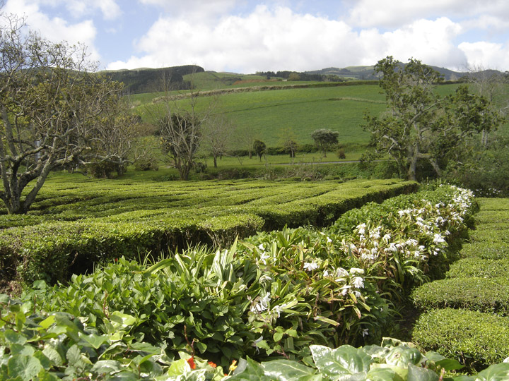 Sao Miguel Island Azores CR2X OH2PM