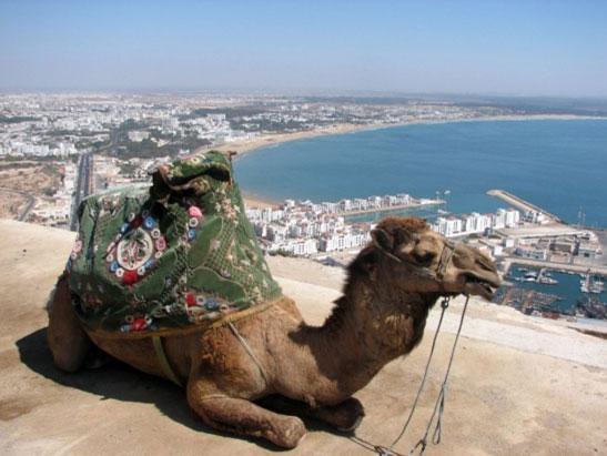 Агадир Марокко 5D7AT